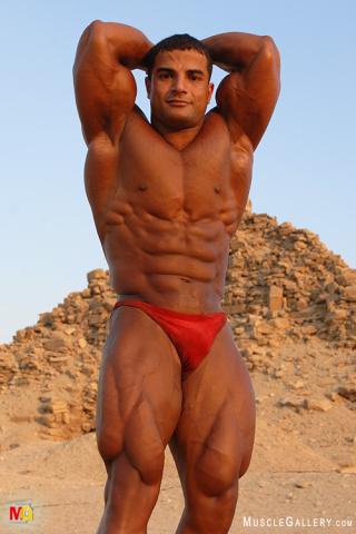 MuscleGallery Ahmed El Wardany