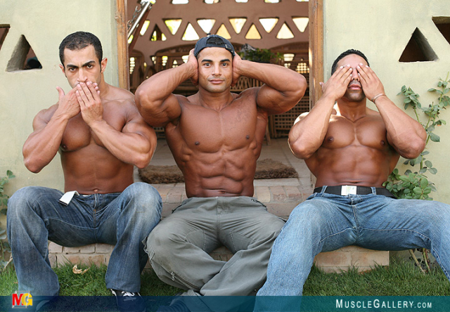Muscle Egypt Part 5