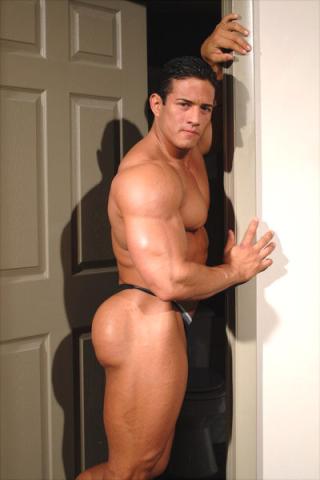 MuscleGallery JC Ballivian