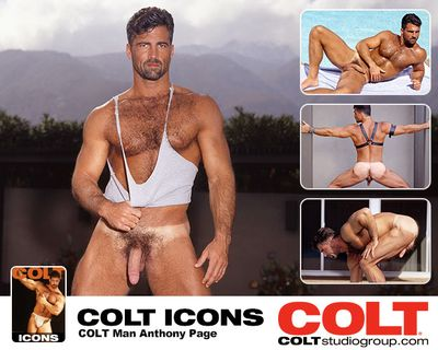 Colt Icon Anthony Page