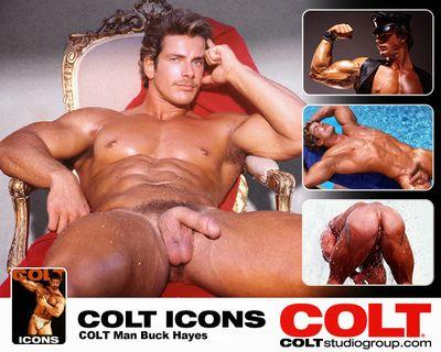 Colt Icon Buck Hayes