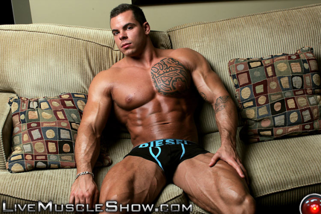 Live Muscle Show Norman Cox