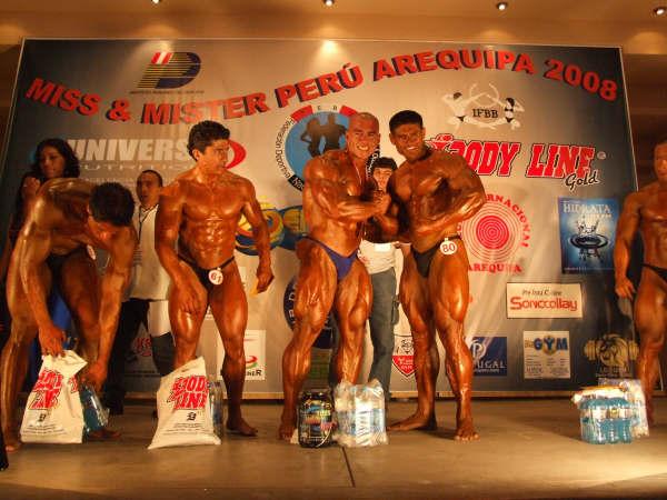 2008 Mister Peru