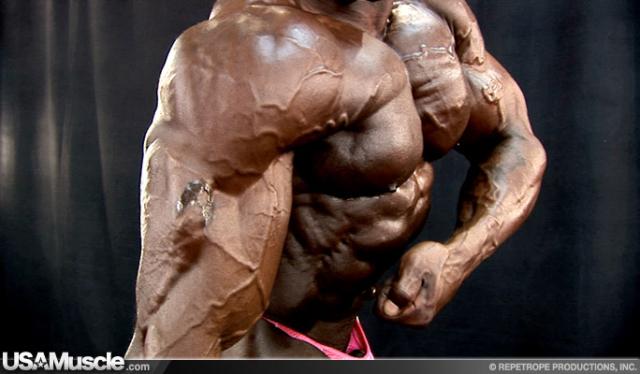 14138-muscle-k-058