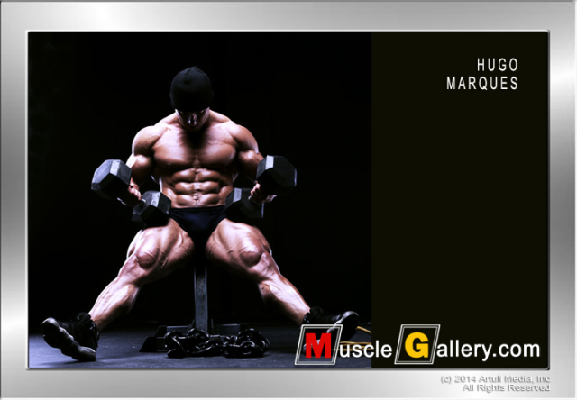 MuscleGallery Hugo Marques