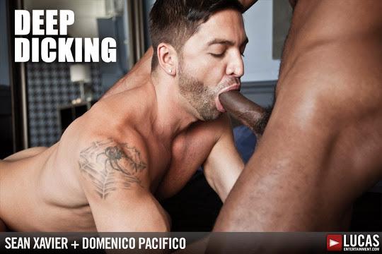 Exclusive Sean Xaviers Big Black Cock Tears Up Dominic Pacifico