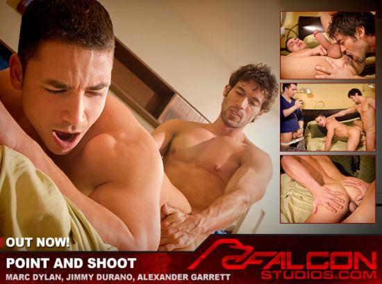4_falcon