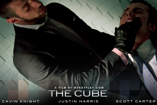 The cube (8)