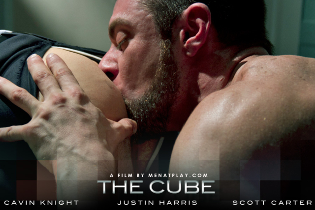 The cube (13)