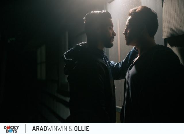 Arad-ollie-1