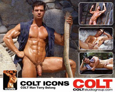 Colt Icon Terry Delong
