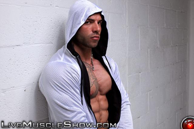 Live Muscle Show Max Hilton