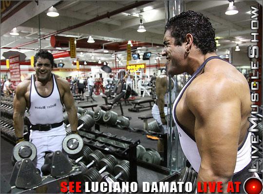 Luciano-Damato-Live