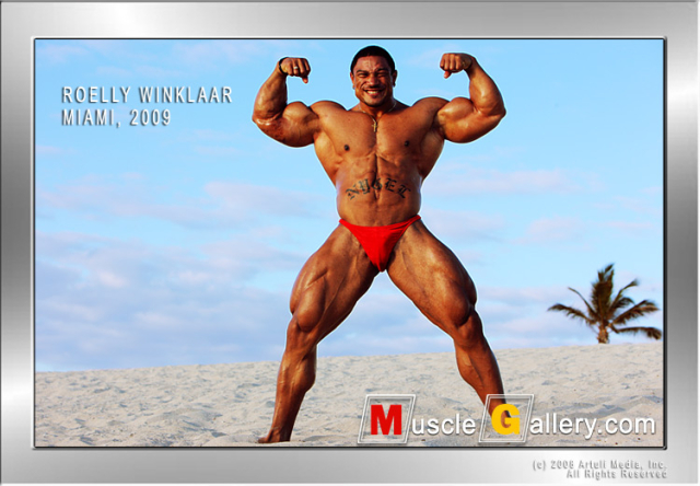 Roelly_02