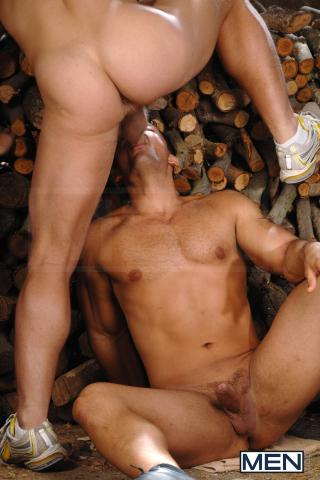 WoodDMH (9)