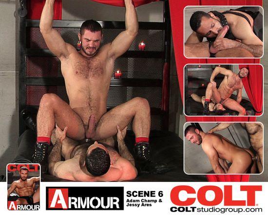 Colt_6