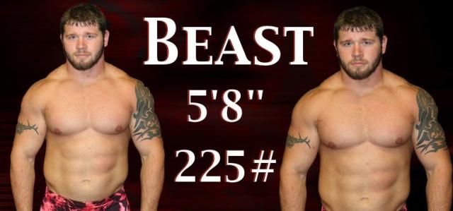 Wrestler Beast