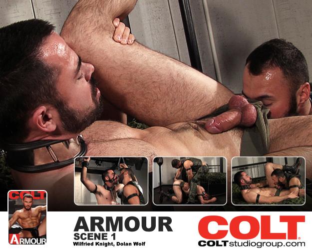 Colt_1
