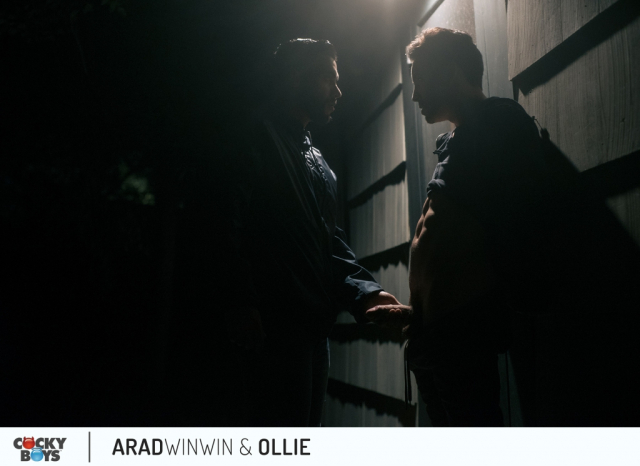 Arad-ollie-3
