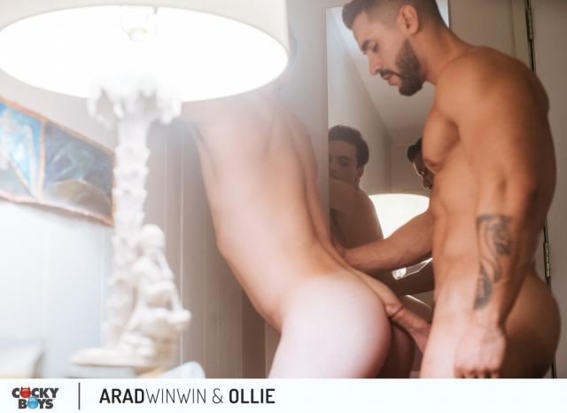 Arad-ollie-13