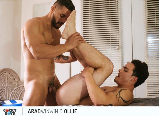 Arad-ollie-20