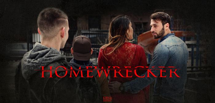 Men Series: Home Wrecker