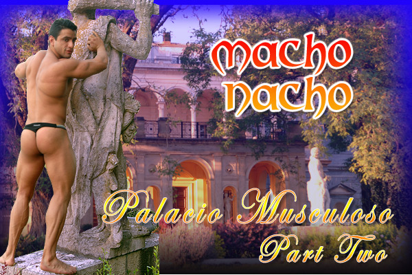 Powermen Macho Nacho
