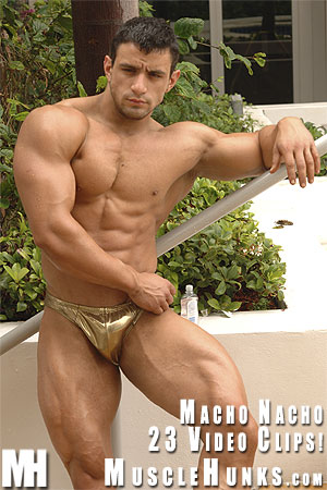 Macho-nacho-golden-boy-01