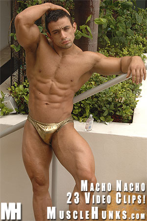 Macho-nacho-golden-boy-02