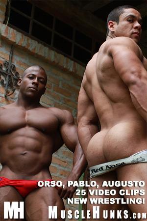 Orso_augusto_pablo_08