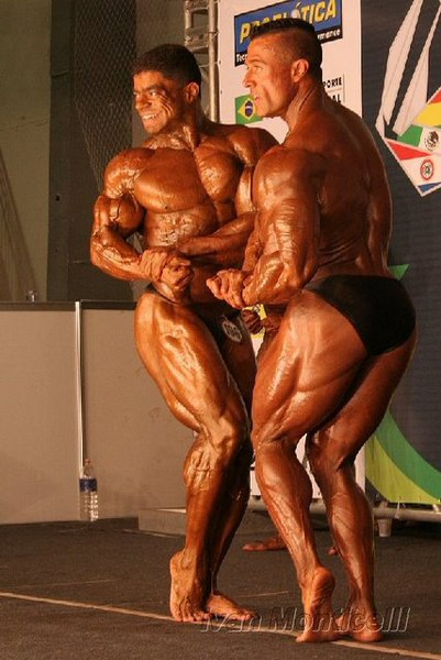 2008 IFBB South American Championships