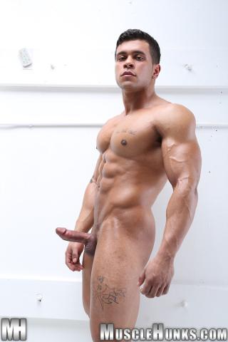 Rico_wolf2A010