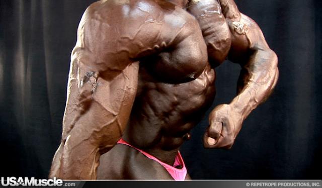 14138-muscle-k-055