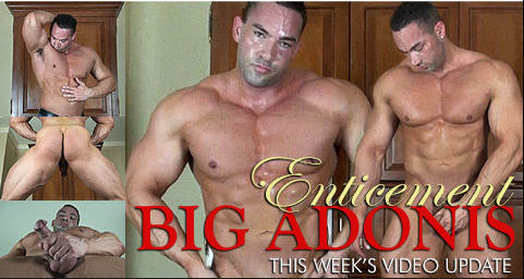 Mission 4 Muscle Big Adonis