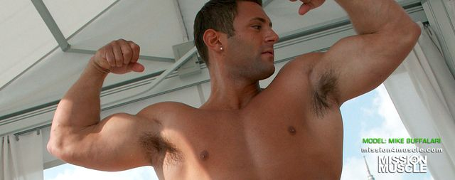 Mission 4 Muscle Mike Buffalari