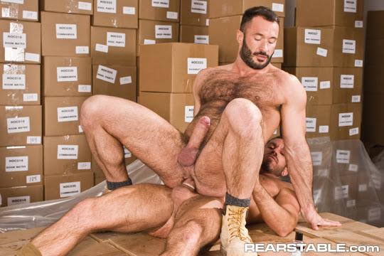 Damien Stone & Wilfried Knight