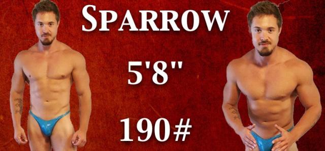 Wrestler Sparrow