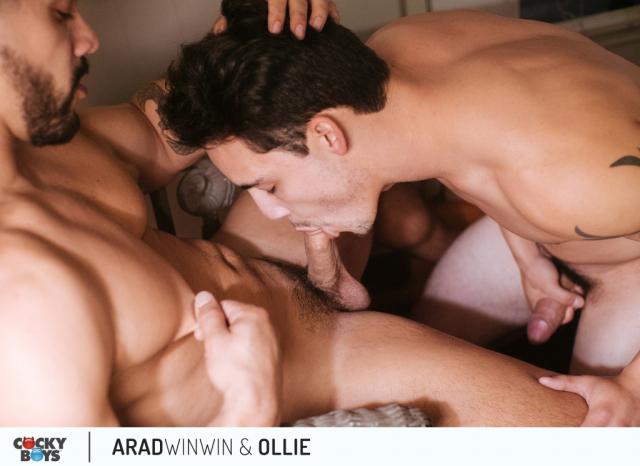 Arad-ollie-10