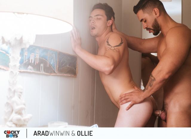 Arad-ollie-17