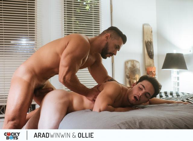 Arad-ollie-24
