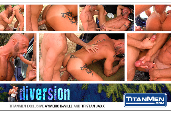 Divr_scene03_collage