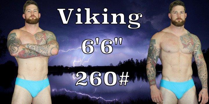 Wrestler Viking