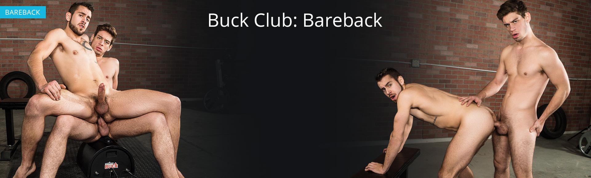 Buck Club (BAREBACK)