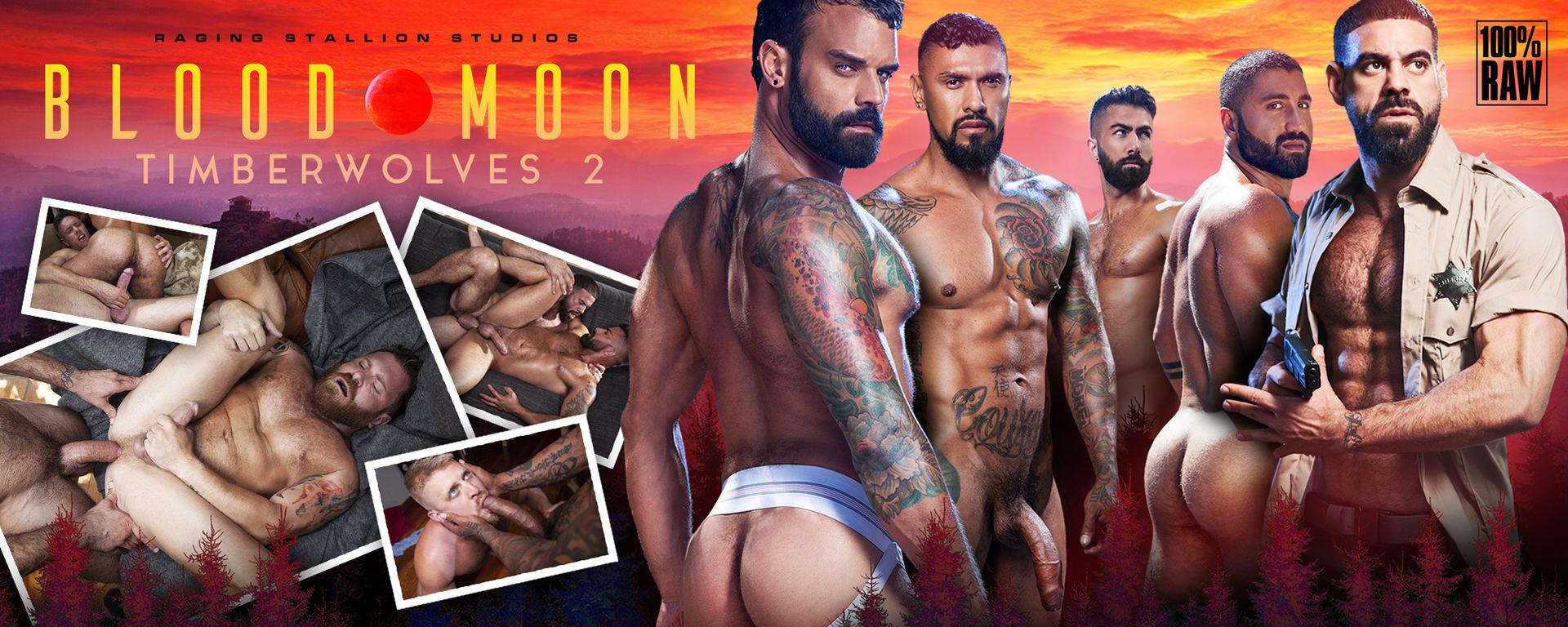Raging Stallion Blood Moon: Timberwolves 2
