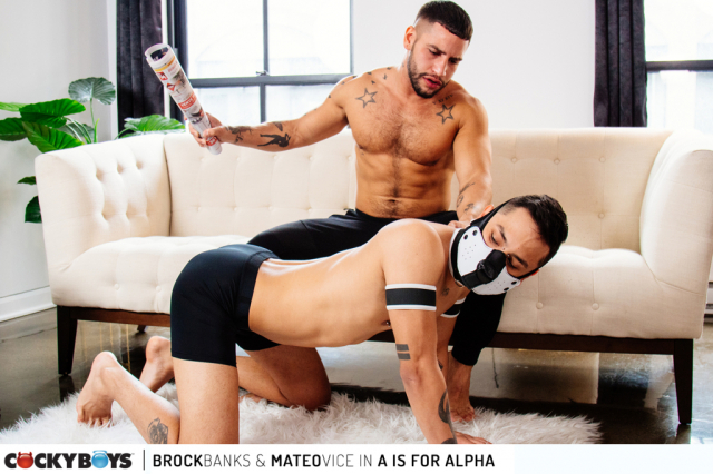 Brock banks-mateo vice _a is for alpha_-6