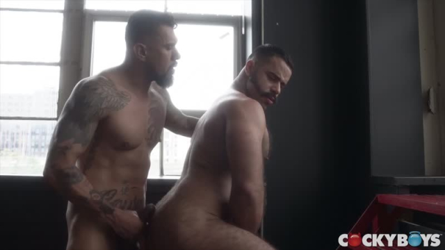 Boomer-banks-teddy-torres_0046