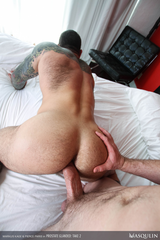 MASQULIN_Prostate_Glanded_Take2_27