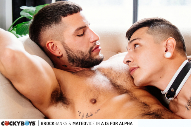 Brock banks-mateo vice _a is for alpha_-21