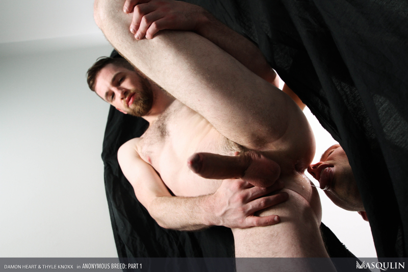 MASQULIN_Anonymous_Breed_Part_1_21