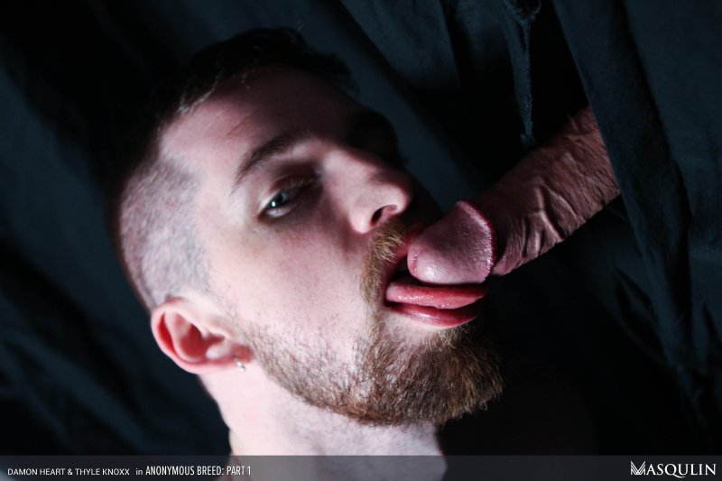 MASQULIN_Anonymous_Breed_Part_1_20